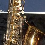 Selmer AS500 Picture 02